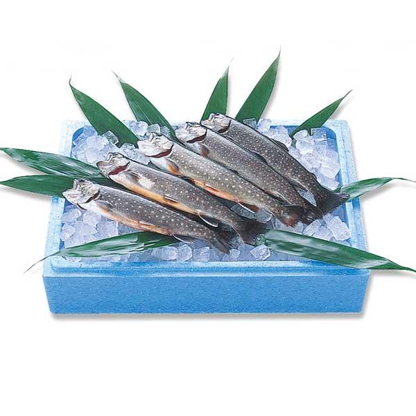冷凍岩魚(いわな)